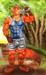 Nick Wilde exercise by a70701111