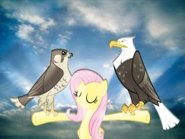 Fluttershy and her animals by PPYFMLP