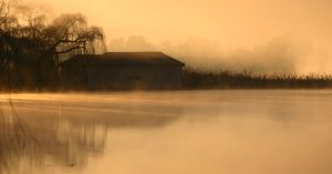 Misty Morning by oubaas
