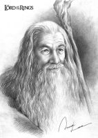 Gandalf by ilxwing