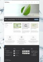 Eltorn - Premium WordPress Theme by ZERGEV