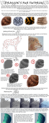 Painting and Stylizing Fur Tutorial by Seyumei