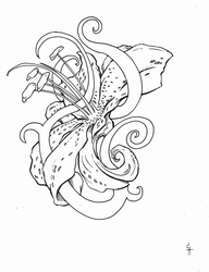 Stargazer Lilly Tattoo design -  lines by QuestingRaven