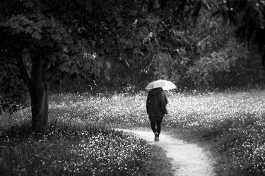 A Walk in the Rain by adamlack