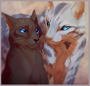 Crowpaw and Feathertail by WhiteKimya