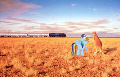 Outback Dash by snakeman1992