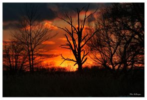 Sunset-012810 by PeterDeBurger