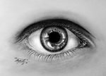 EyeStudy by GeorgeXVII