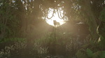 Morning in the jungle by John2903