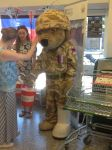 Help for Heroes Bear in Waitrose by CCB-18