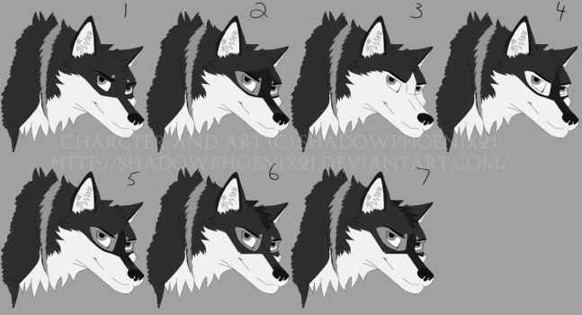 James face markings concepts by Shadowphoenix21