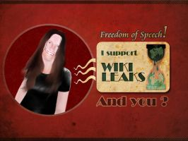 I Support Wikileaks - And You? by PoizonMyst