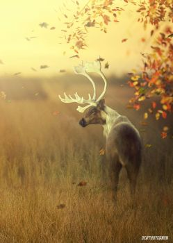 Welcome Fall by deathbycanon