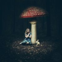 lost in a dream by photoflake