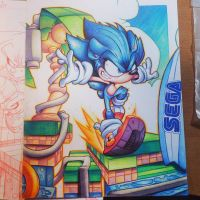 Sonic Hedgehog Commish by RobDuenas