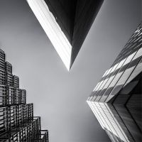 Looking up by deepgrounduk