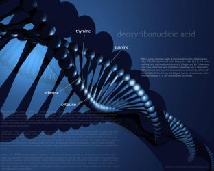 DNA by padey89