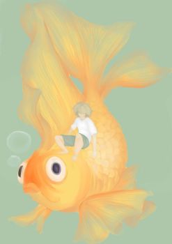 Gold fish by ryuukoelric