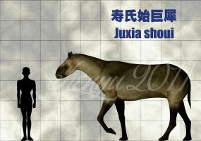 Juxia shoui by sinammonite