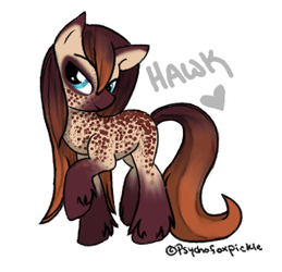 Hawk by psychofoxpickle