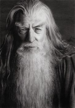 Gandalf the Grey by D17rulez