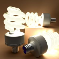CFL Bulbs by MikeK4ICY