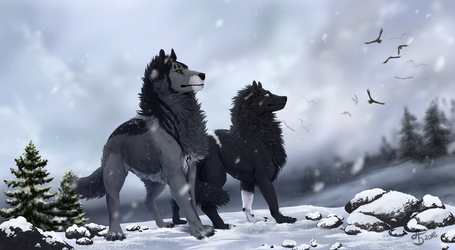 YCH Commish: Blues of Winter by Aminirus