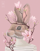 Magnolia by Dameo-in