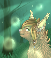 Bubbled in the forest by Cepto