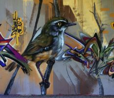 bird graffito by Pippa-pppx