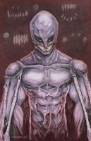 Femto Berserk Anime by ChrisOzFulton