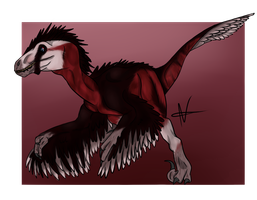 Raptor's taking over! by Raffled