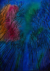 Night Sky Forest by MarjoryBurnt