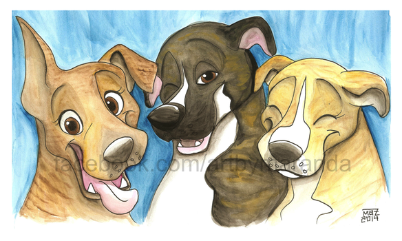 Pretty Brindle Pitties by Coloran