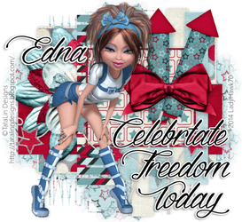Independence Day 2014 by LadyHawk70