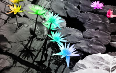 Water Lilies by MightyBOBcnc