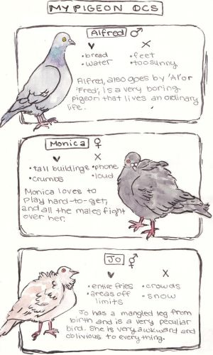 PIGEON OCs by KatyaHam