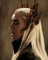 Thranduil by TheDevilOnYourBack