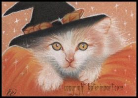 Kitty Witch - ACEO by Katerina-Art