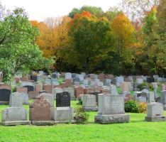 Autumn Amongst the Tombstones by Kitteh-Pawz