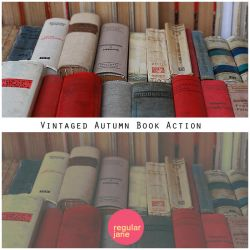 Vintaged Autumn Book Action by regularjane