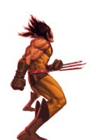 WOLVERINE WEDNESDAY - 46 by reau