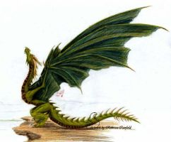 swamp wyvern by chaosia