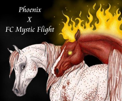Phoenix x FC Mystic Flight by apollo22