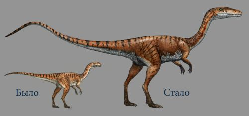 Coelophysis by atrox1
