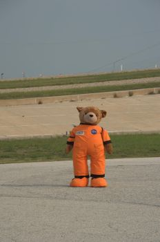 D3wd105 - Space Bear by d3wd