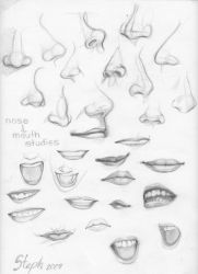 Nose and Mouth studies by tigre-lys
