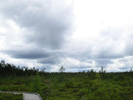 Clouds Over the Bog 4 by ChronosCat