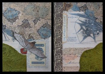 Hawk Diptych by hummbuzz