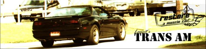 The Trans Am project by LeSsArt